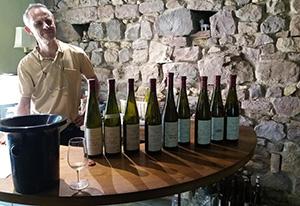 Jean Pierre Frick Winegrower Harvesting